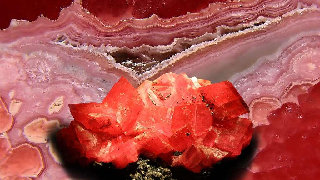 La rhodochrosite, une couleur éclatante
