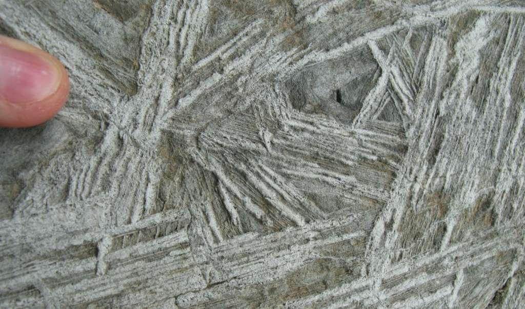 Un échantillon de komatiite trouvé au Canada dans la ceinture des roches vertes de l'Abitibi. On voit bien la texture caractéristique appelée Spinifex. © Ryan Anderson