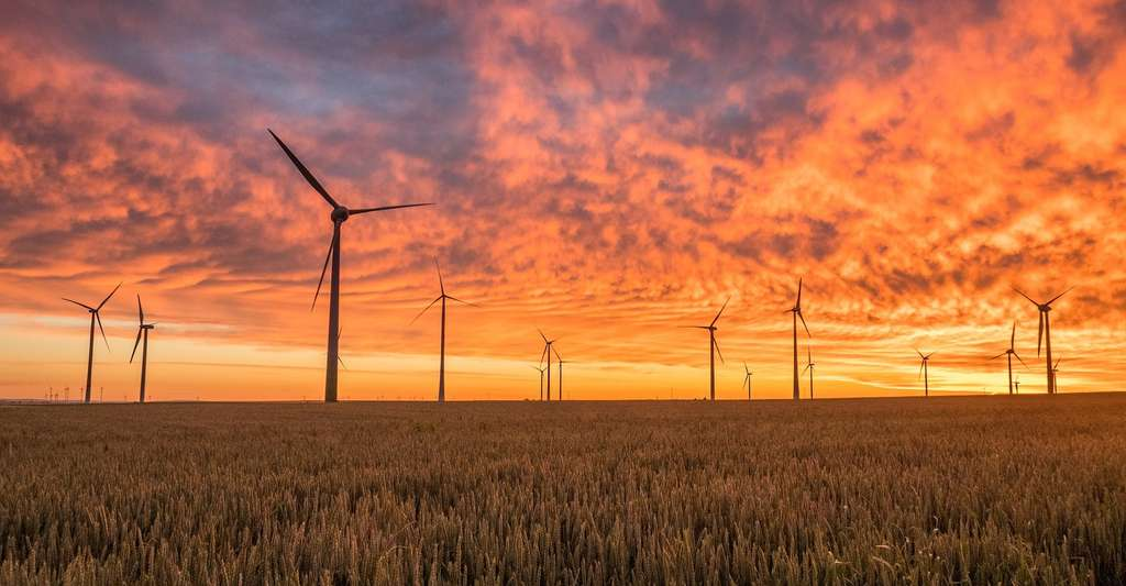 Les pales des éoliennes sont fabriquées à partir de composites thermodurcissables, à la fois légers et solides. © Pexels, Pixabay, CC0 Creative Commons