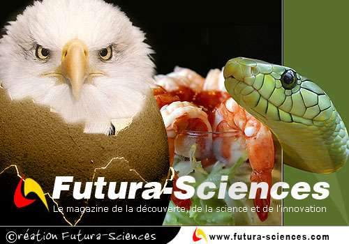 Fan de Futura-Sciences