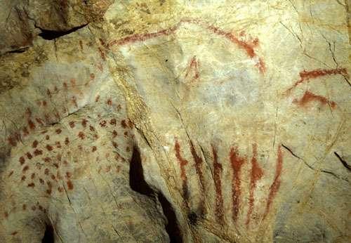 Fig. 2. Les signes entoptiques que l'on voit dans la transe incluent des nuages de points. Or, on constate souvent la présence de ce type de signes dans les grottes ornées, comme ici à Pindal (Asturies, Espagne). © Cliché L. de Seilhe. Tous droits réservés