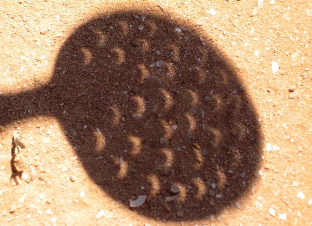 Un des moyens de regarder l'éclipse sans danger est d'utiliser une passoire : les petits trous pourront, sur une surface plane à bonne distance, créer autant d'images du soleil. © Olivier Garde