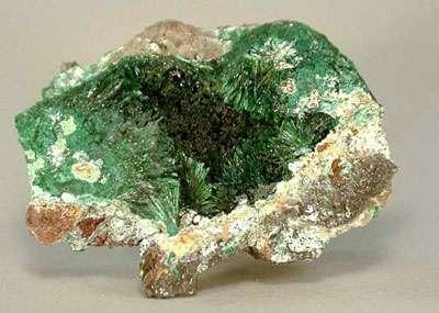 Atacamite - www.fabreminerals.com - Fabre Minerals photo