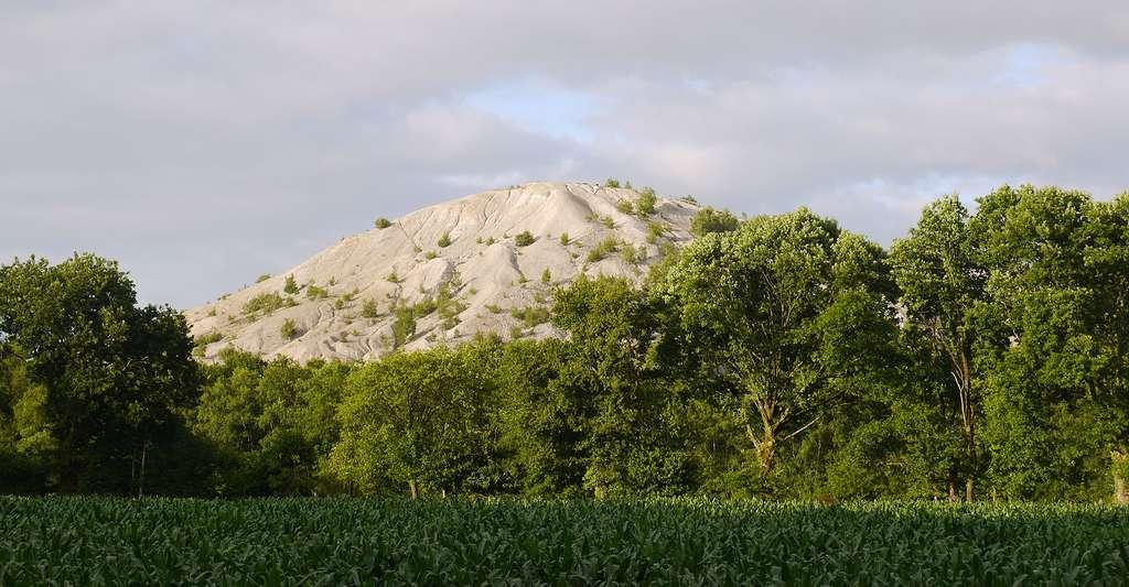 Où y a-t-il le plus de mines d'étain ? Ici, le terril d'Abbaretz (Loire-Atlantique), en France. © Simon de l'Ouest, Wikimedia Commons, CC by-sa 4.0