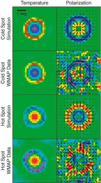 Comparaison des prédictions et des observations concernant les fluctuations de températures et la polarisation autour des points (spot) chauds (hot) et froids (cold) dans le CMB. Crédit : Nasa / WMap Science Team