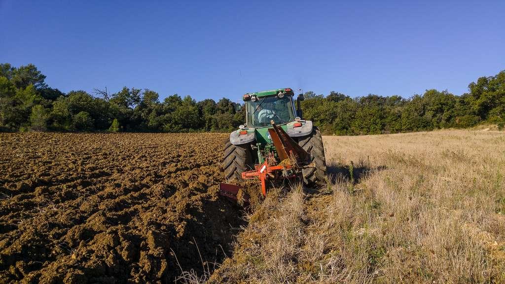 Le labour, symbole de l'agriculture depuis des siècles, présente beaucoup d'inconvénients, et en particulier celui d'empêcher les champs de fixer du carbone pendant une bonne partie de l'année. © Jackmac34, Pixabay, DP