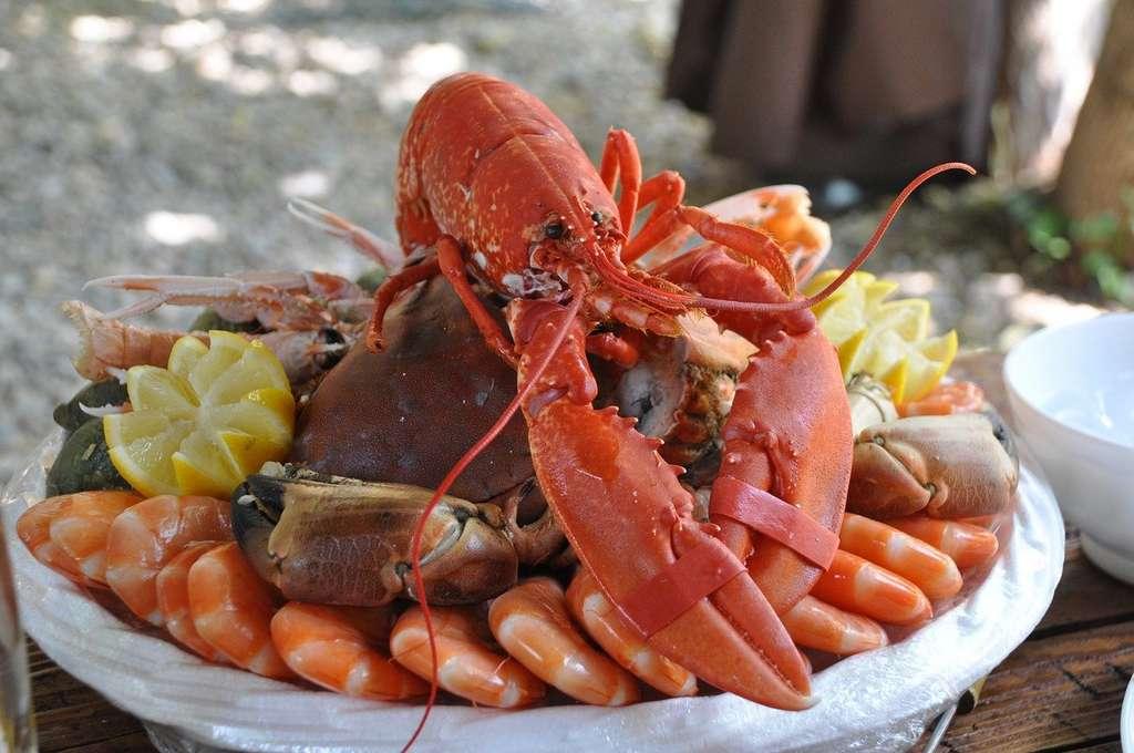 Est-ce bien raisonnable d'abuser des plateaux de fruits de mer ? © Nadine Doerle, Pixabay, DP
