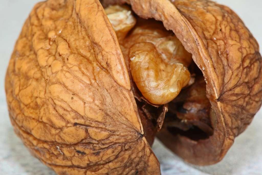 Manger des noix réduirait le risque de mortalité. Il ne faut pas s'en priver. © Zoonabar, Flickr, CC by sa 2.0