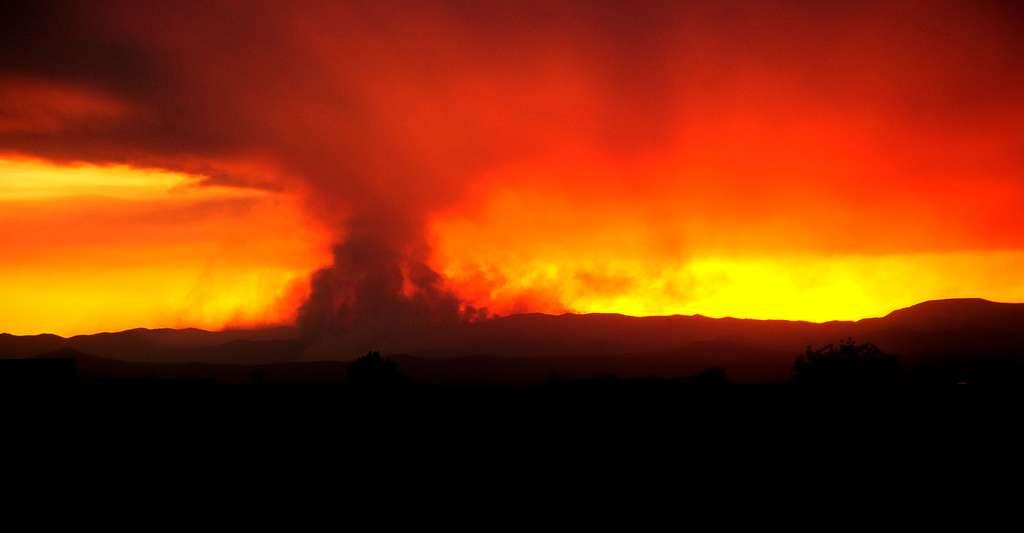 Le feu peut se propager très rapidement. © Images By Lane, CC by-nc 2.0