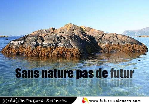 Sans nature ....