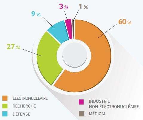 Estimation de la répartition des activités génératrices de déchets radioactifs en France réalisée par l'Agence nationale pour la gestion des déchets radioactifs (Andra). Les déchets nucléaires comptent pour 60 % d'entre eux. © Andra