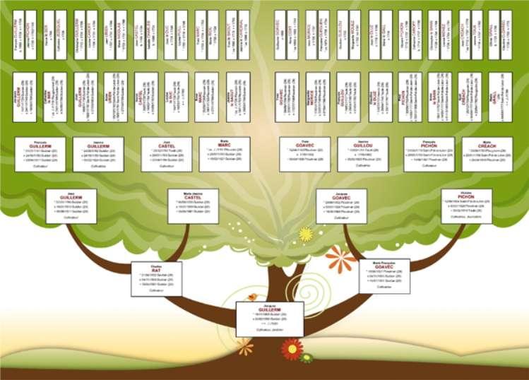 Arbre Genealogique Quels Sont Les Meilleurs Logiciels