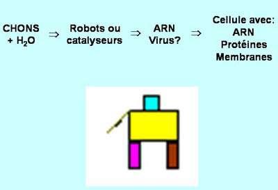 Les molécules catalytiques et molécules de l'information sont-elles à la base de la vie ? © DR