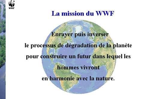 © WWF-France