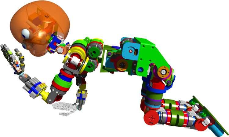 Vues générales du robot iCub. © Courtesy of the RobotCub project