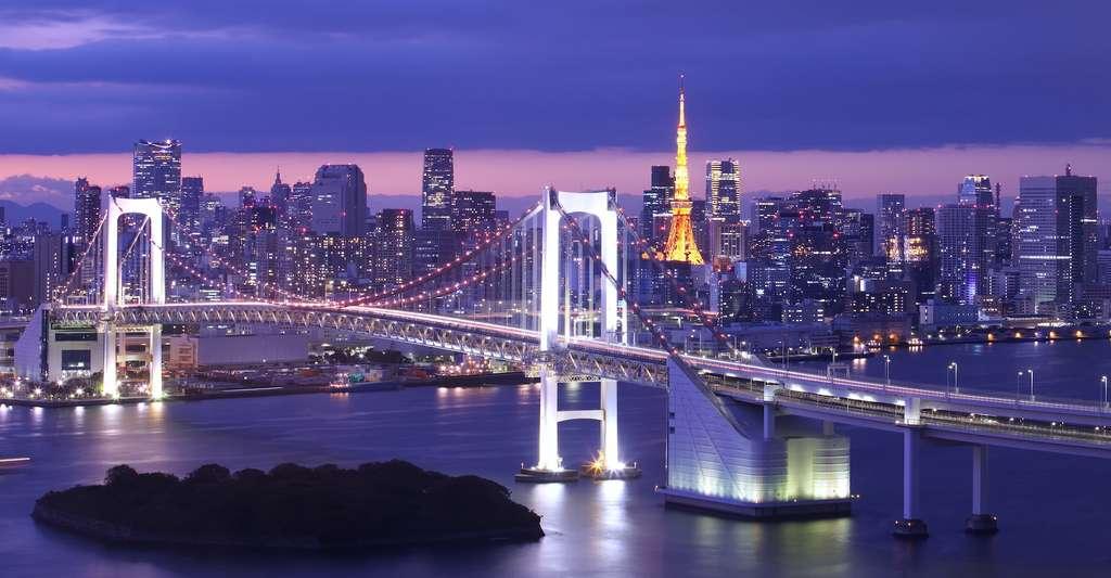 Au cours du 20e siècle, la ville de Tokyo a connu un affaissement de 4 mètres qui a pu être ralenti par un arrêt des extractions d'eau souterraine. © torsakarin, Adobe Stock