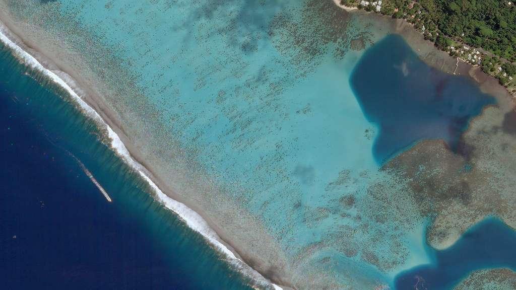 Le récif corallien de Moorea, en Polynésie française ; image également acquise par un satellite de Planet. © Planet Lab 2018