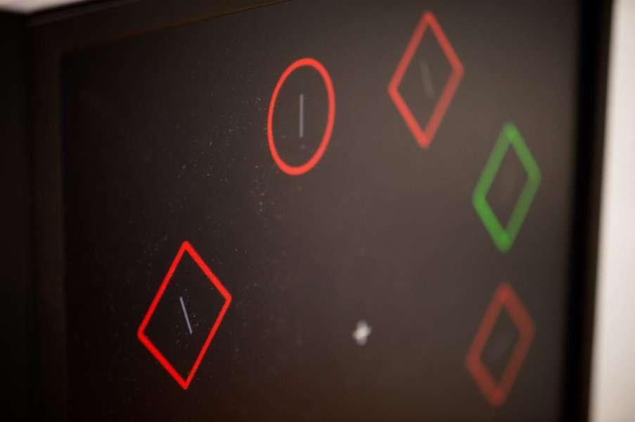 Une image du jeu imaginé par les chercheurs pour réduire l'anxiété des participants. © Michigan State University