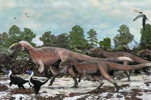 Vue d'artiste d'un groupe de Yutyrannus huali. Bipèdes, de la famille des tyrannosauroïdes géants, ces dinosaures étaient totalement ou partiellement recouverts de longues plumes d'une quinzaine de centimètres. © Brian Choo