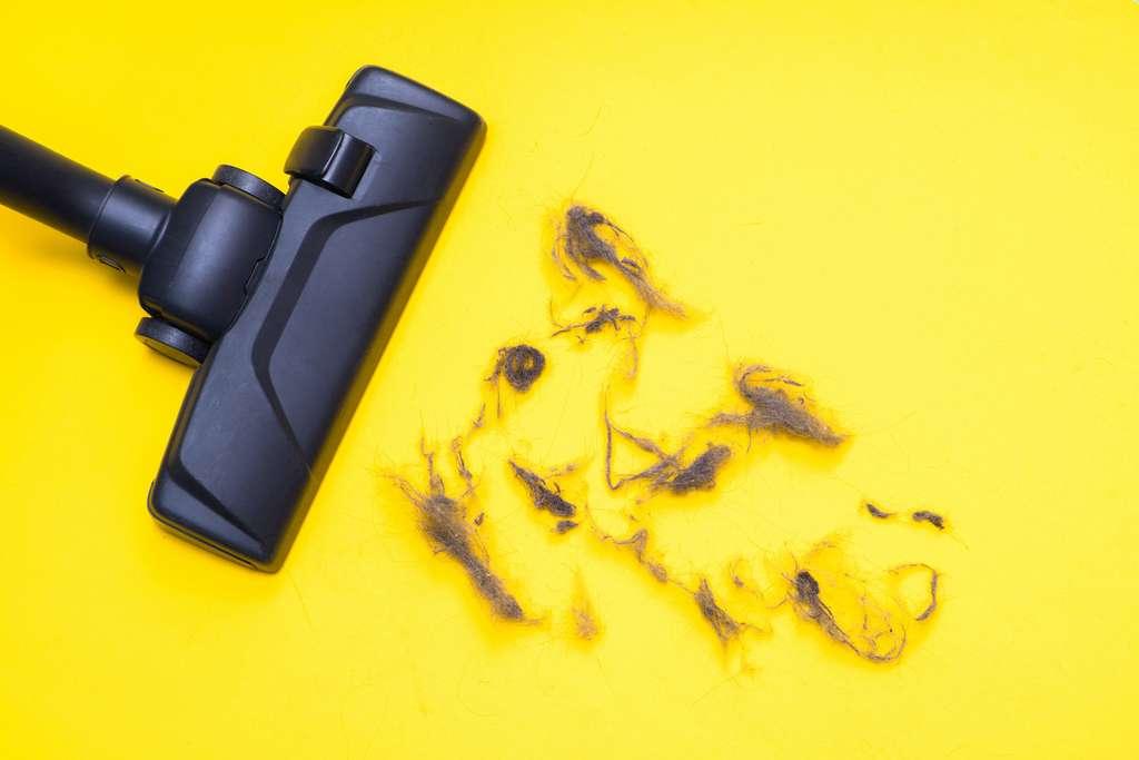 La surface à nettoyer est déterminante. © CrispyMedia, Adobe Stock