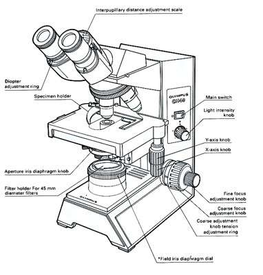 Microscope optique vue externe