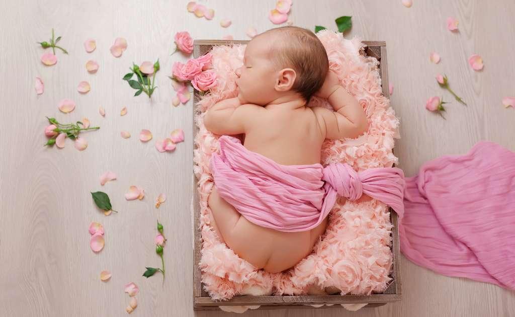 La légende veut que les petites filles naissent dans les roses. C'est peut-être aussi pour cela que les femmes aiment tant les fleurs… © archikatia, Fotolia