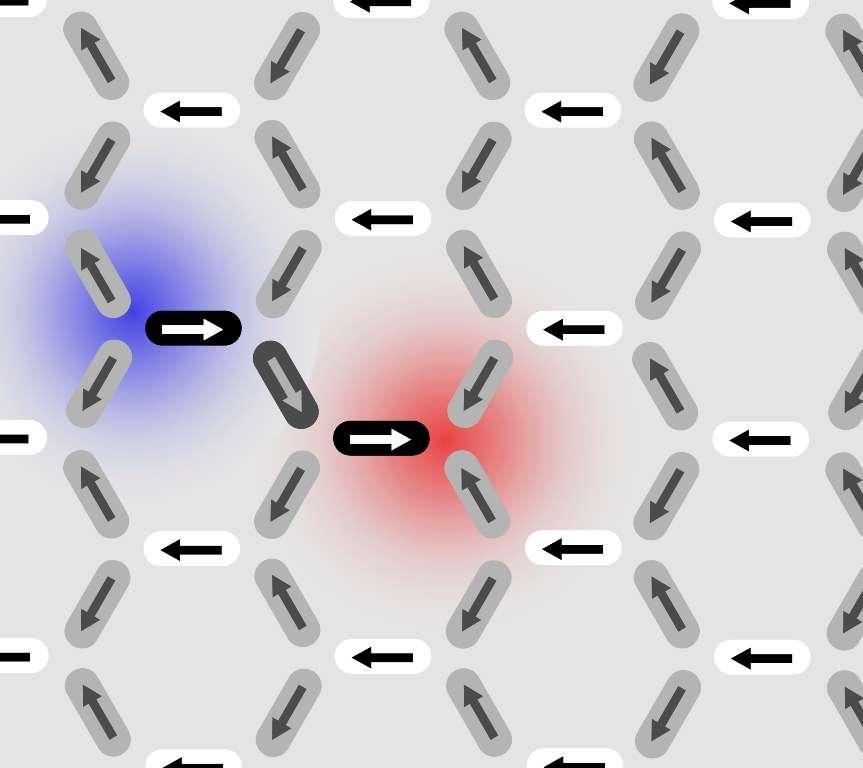 Ces défauts se comportent à la manière de monopôles magnétiques libres. On voit naître une « corde de Dirac ». © PSI/E. Mengotti