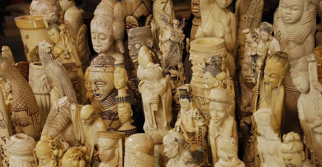 Statuettes faites en ivoire. © USFWS Mountain-Prairie - CC BY 2.0