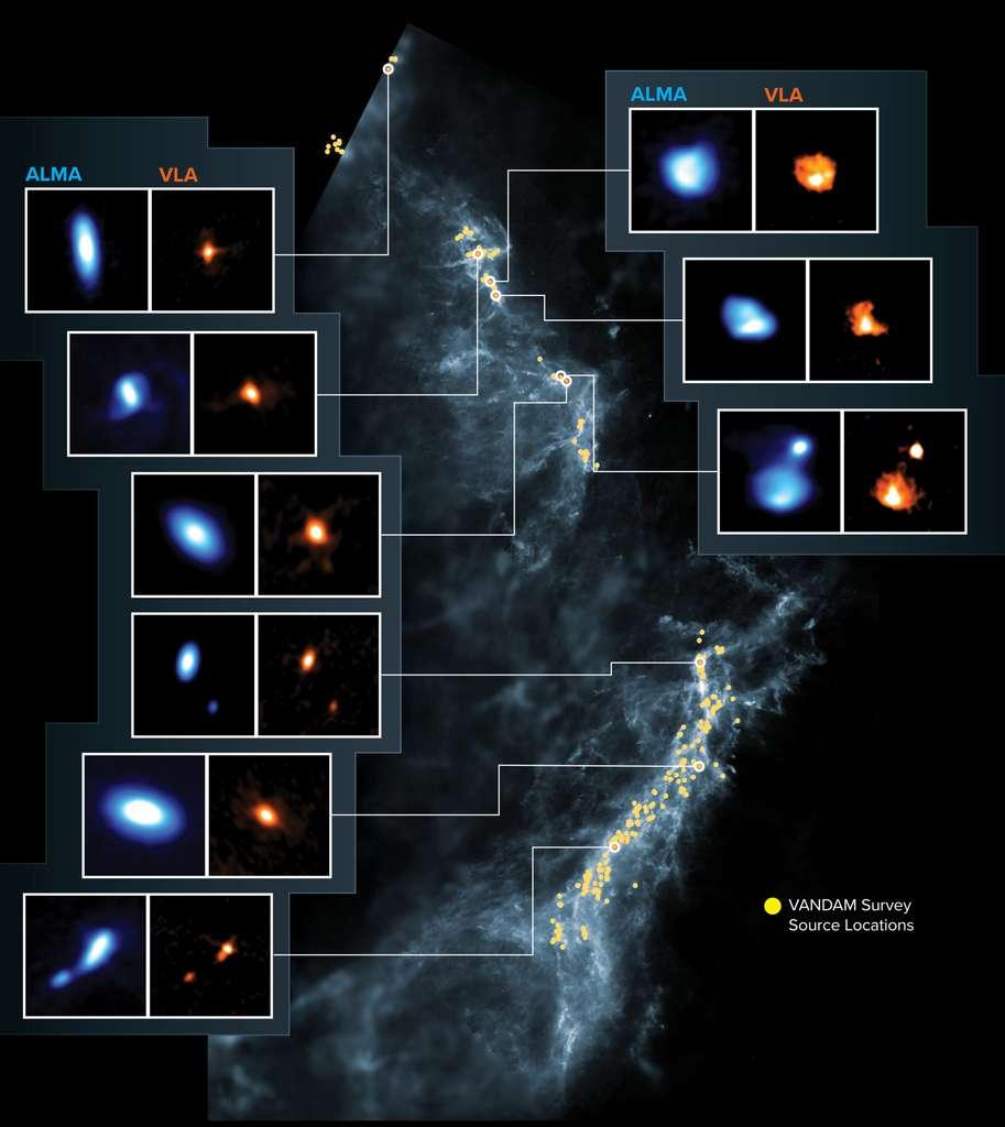 Cette image montre les nuages moléculaires d'Orion, la cible du levé Vandam. Les points jaunes sont les emplacements des proto-étoiles observées sur une image de fond bleu réalisée par les instruments dans l'espace de la mission Herschel. Les panneaux latéraux montrent neuf jeunes proto-étoiles imagées par Alma (bleu) et le VLA (orange). Alma (ESO/NAOJ/NRAO), J. Tobin ; NRAO/AUI/NSF, S. Dagnello ; Herschel/ESA
