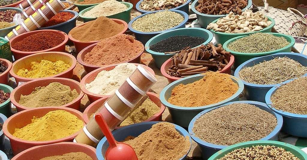 Poivre blanc ou noir, cannelle, coriandre, la senteur des épices. © Jean-Paul-V, Pixabay, DP