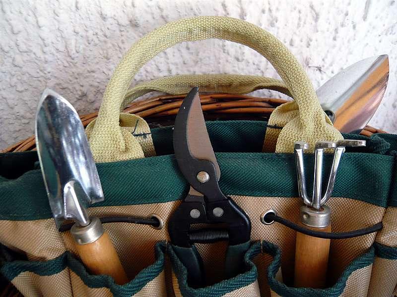 Dans le choix de vos petits outils de jardinage, n'hésitez pas à privilégier des poignées ergonomiques. © Bruno Parmentier, Flickr, CC by-nc-sa 2.0