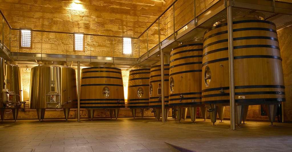 Château Franc Mayne, le Bordelais est une célèbre région viticole. © Château Franc Mayne, Domaine public