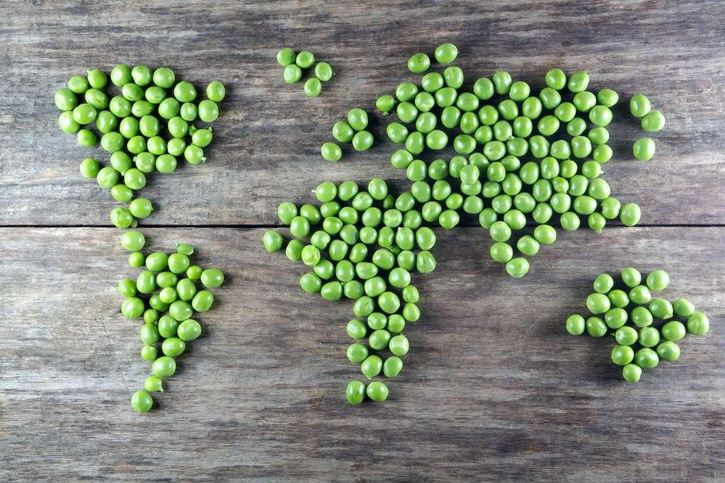 Sans surprise, les aliments d'origine végétale sont moins polluants pour le climat que ceux d'origine animale. © Vetre, Fotolia