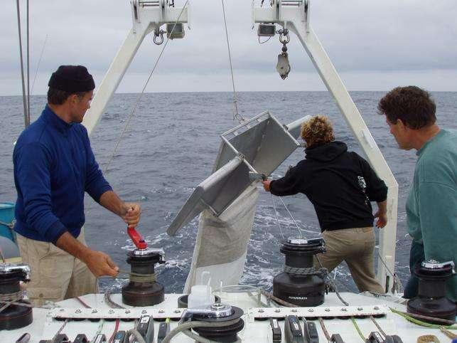 Le Manta trawl est mis à l'eau depuis l'arrière du bateau. Il est équipé d'ailes porteuses sur les côtés, qui permettent de garder l'ouverture du filet à l'interface air-mer. Les filets récupèrent donc un certain volume de débris qui stagnent en surface de l'eau. De gauche à droite, les chercheurs Marcus Eriksen, Jody Lemmon et Charles Moore. © Algalita Marine Research Institute