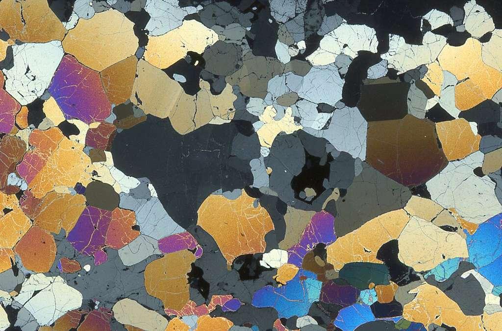 Ci-dessus, une péridotite d'Hawaï, où les « joints triples » entre les grains, typiques des roches cristallisées à l'état solide sont visibles. L'image est obtenue à partir d'une lame mince (3/100 de mm d'épaisseur ; 3 X 2 cm) observée en lumière polarisée analysée (LPA). © Françoise Boudier