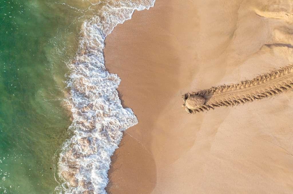 Pays : Oman - Photographe : Qasim Al Farsi. © Drone Photo Awards 2021