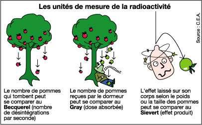 Les différentes unités permettant de mesurer la radioactivité. On mesure l'activité radionucléique en becquerels, la dose reçue en grays et l'effet produit en sieverts. © CEA