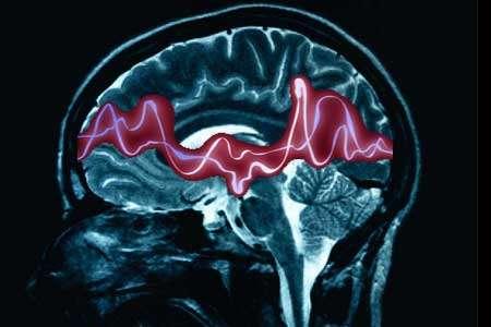 La mort subite chez le patient épileptique intervient la nuit. On suppose qu'une crise interfère avec des fonctions vitales commandées par le système nerveux. Ainsi, la respiration peut être coupée, et le malade finit par en mourir. © DevisousDeviantBoi, deviantart.com, cc by nc nd 3.0
