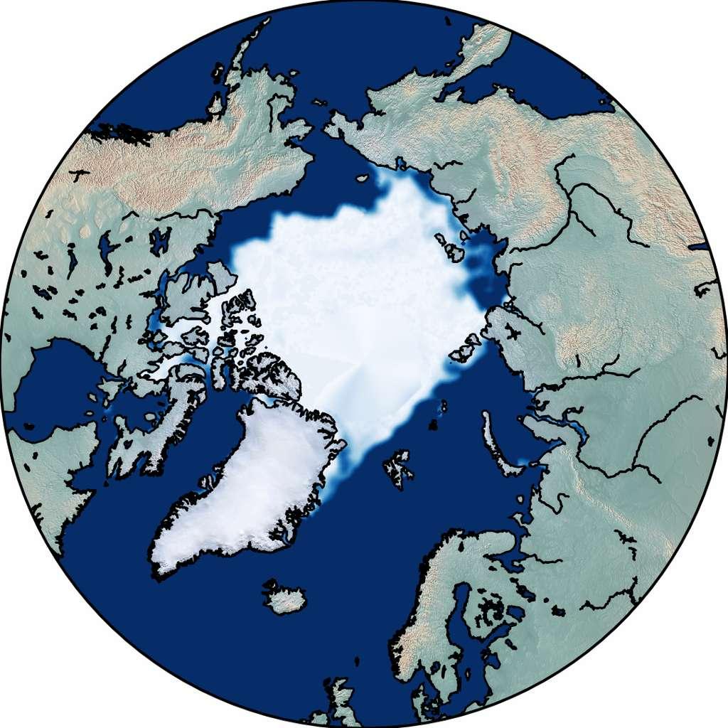 Illustration de la surface glacée à la fin de l'été arctique en septembre 1979 © Dirk Notz