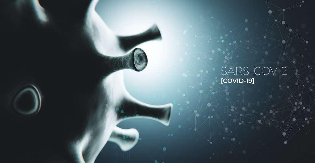 Selon les statistiques, trois nouvelles maladies infectieuses sur quatre nous viennent du monde animal. Parmi elles, le Covid-19. © merklicht.de, Adobe Stock