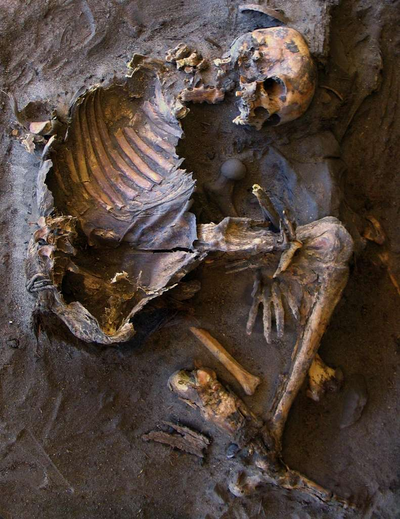Le squelette d'une femme découverte dans la zone funéraire, un abri de roche dédié aux femmes et enfants. Elle avait entre 30 et 40 ans lorsqu'elle est morte. © R. Castelli