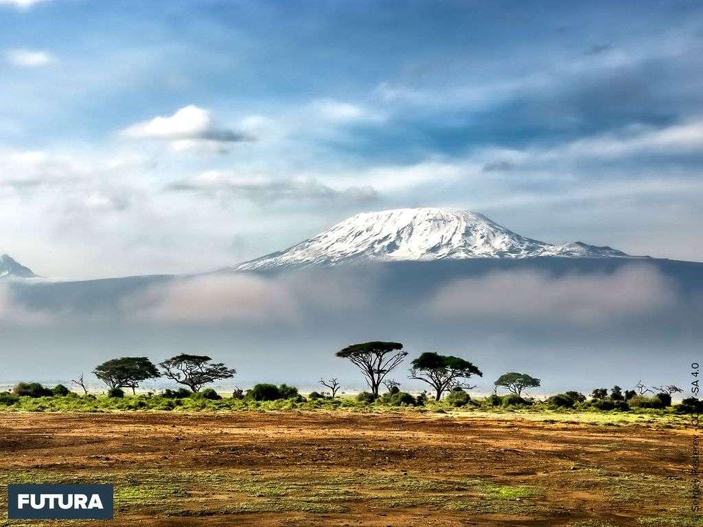 Les neiges du Kilimanjaro vues depuis le Parc National Amboseli, Kenya