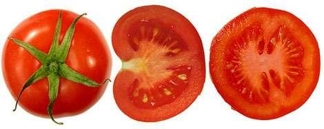 Détail d'une tomate en coupe. © Wikipédia