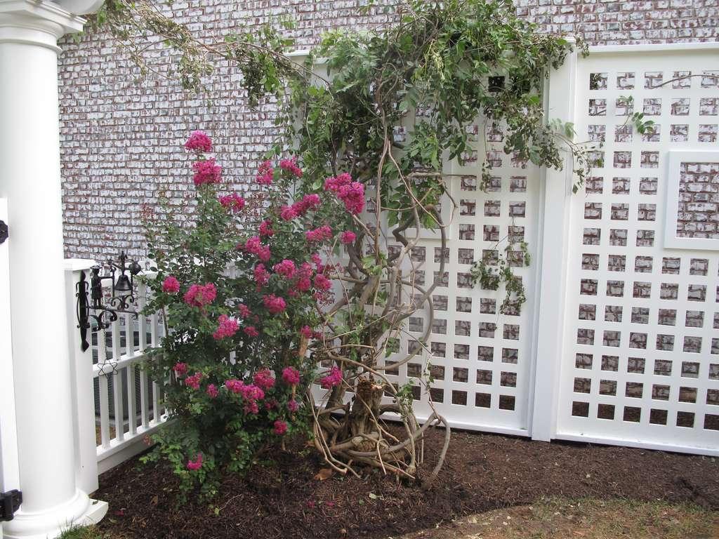 Un treillage de jardin peut cacher un mur. © Gregs Landscaping, Flickr, CC by 2.0