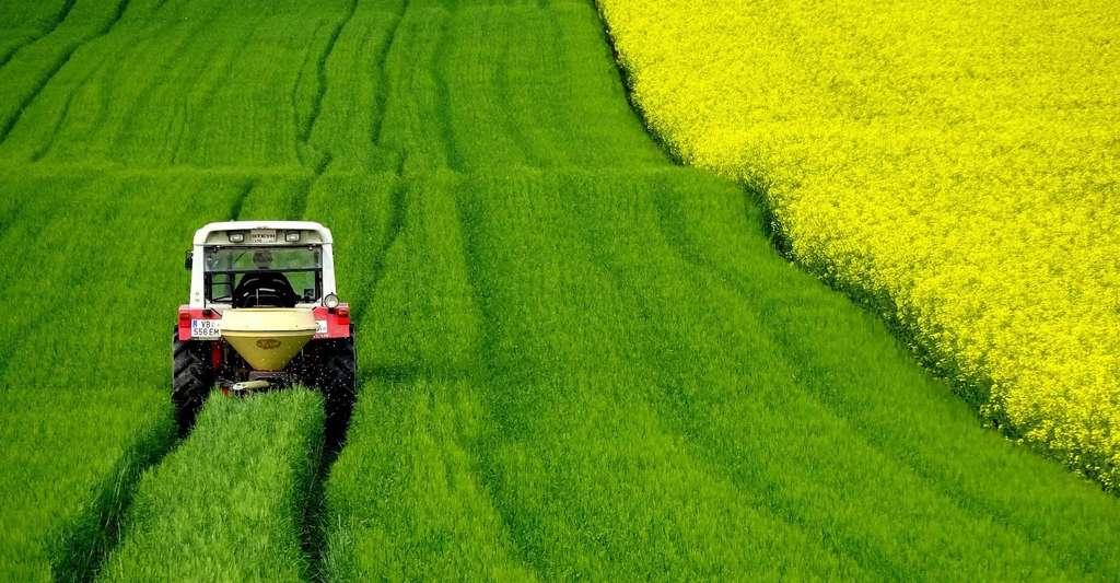 Les tracteurs ont fait leur apparition dans les champs au début du XIXe siècle. Une innovation majeure à l'époque. © dengmo, Pixabay License
