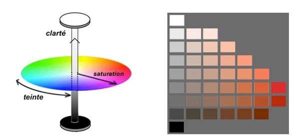 Caractérisation des couleurs selon trois paramètres : teinte, saturation, clarté. La palette du rouge illustre les variations de clarté et de saturation. © DR
