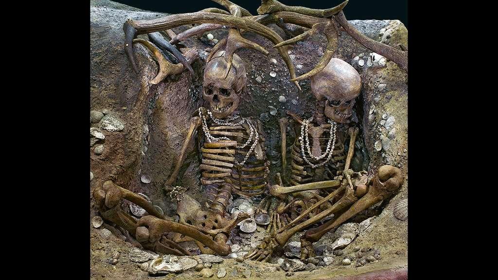 Reconstitution de la sépulture de Téviec de 1938, restaurée en 2010. Muséum de Toulouse. © Dunod, tous droits réservés