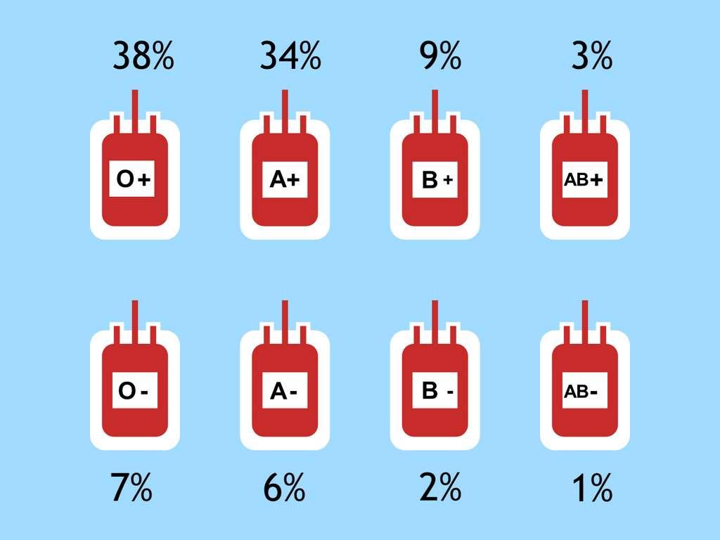 Au niveau mondial, la répartition des groupes sanguins O, A, B et AB est de respectivement 45 %, 40 %, 11 % et 4 %. © Humdan, Adobe Stock, adaptation C.D pour Futura