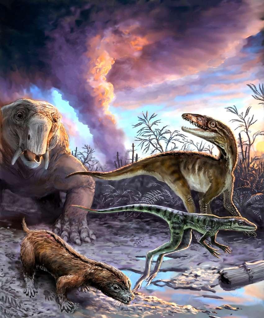 Cette image d'artiste montre des animaux échappant à une éruption volcanique il y a 235 millions d'années dans le nord-ouest de l'Argentine. Les espèces représentées ont laissé des fossiles dans la célèbre formation Chañares. À gauche, deux ancêtres des mammifères (en haut à gauche, un dicynodonte, Dinodontosaurus, et en bas à gauche, au premier plan, un cynodonte, Massetognathus) ; à droite des précurseurs des dinosaures (Lewisuchus en arrière-plan et Lagerpeton au premier plan). © Victor Leshyk