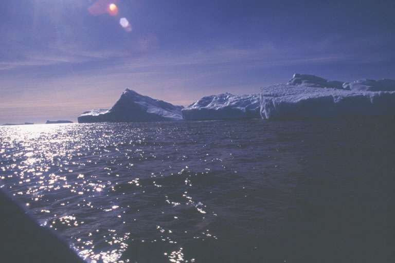 Sortie en zodiac aux abords de la station côtière Antarctique Dumont d'Urvi